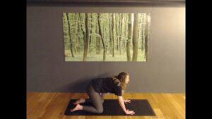 Yoga with Gracie