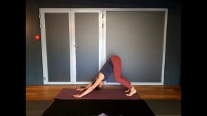 Yoga with Sarah M
